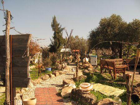 חוות הברבור