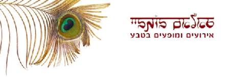 סאלאם בומביי הפקות