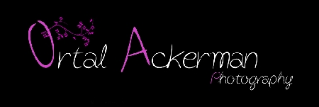 Ortal Ackerman Photography