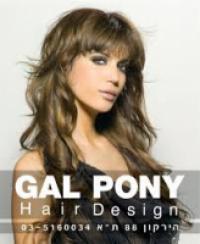 GAL PONY - גל פוני