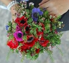 פרחי גן עדן