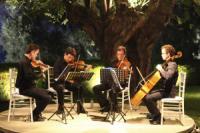 PRIMA - מוזיקה חיה והרכבים לאירועים