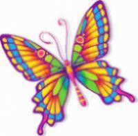 פרפרים הפקות
