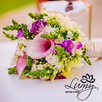 לומי שזירת פרחים
