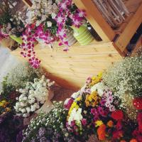 zer פרחים