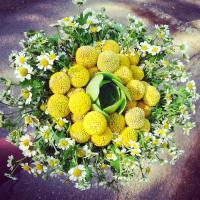 גליתא עיצוב בפרחים