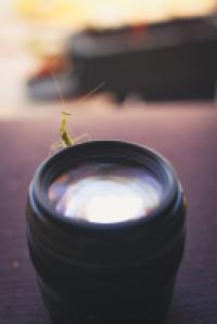 קורסי צילום