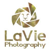 LaVie Photography - לביא צילום