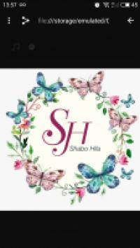 פרחים ועיצובים S.H