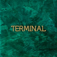 טרמינל - TERMINAL