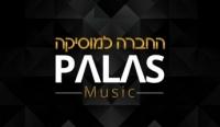 פלס מיוזיק   החברה למוסיקה
