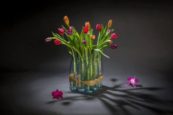 שזירת פרחים - שזירה וסידור פרחים – עשו זאת בעצמכם: מדריך וטיפים