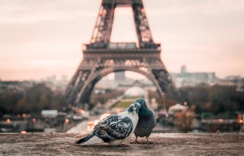ירח דבש רומנטי בפריז
